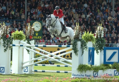 Start 2019: Zes embryo's in Horse Auction Belgium
